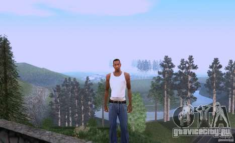 Carl Johnson can talk для GTA San Andreas