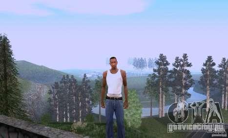 Carl Johnson can talk для GTA San Andreas
