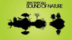 Sounds of Nature