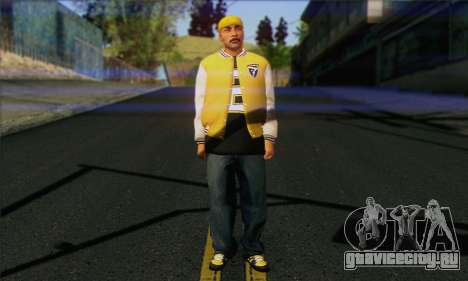 Vagos from GTA 5 Skin 3 для GTA San Andreas