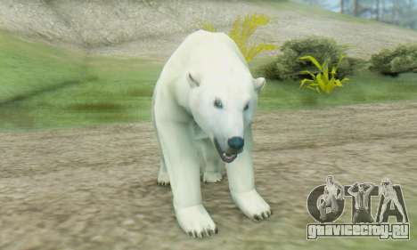 Polar Bear (Mammal) для GTA San Andreas третий скриншот