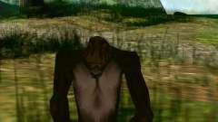 Снежный человек (Bigfoot) на горе Чилиад