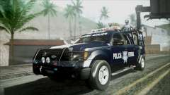 Ford Pickup Policia Federal