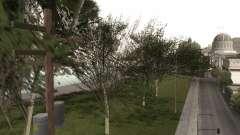 Копия оригинальных деревьев