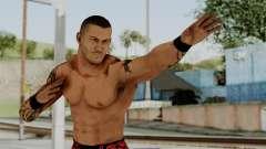 WWE Randy 2