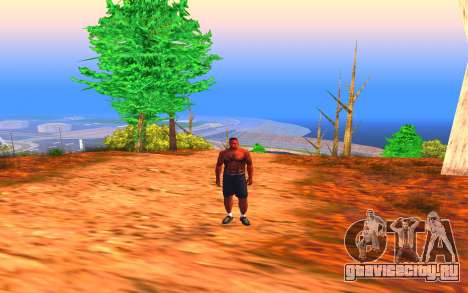 Summer Colormod для GTA San Andreas
